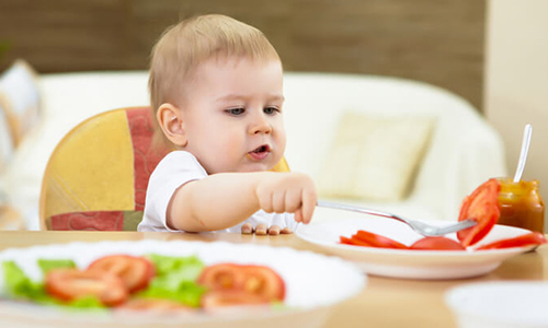Педагогический прикорм - это... Что такое Педагогический прикорм?
