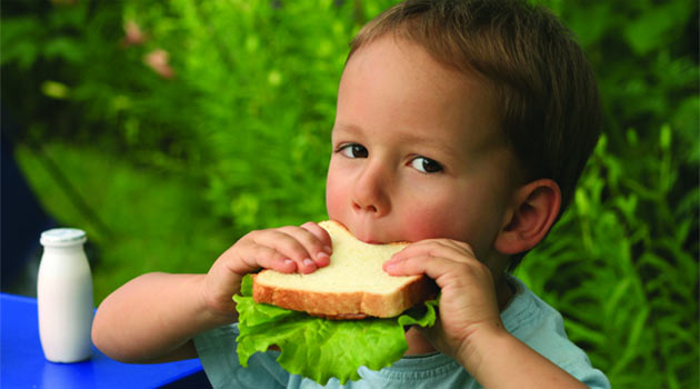 Вкусные и полезные бутерброды для детей