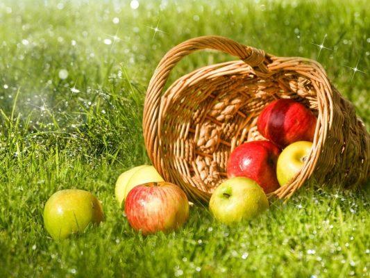 яблоки беременным