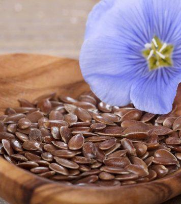 разрешены ли семена льна при беременности