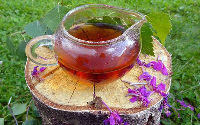 можно ли курам иван чай