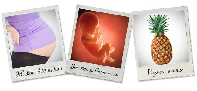 развитие ребенка на 32 неделе