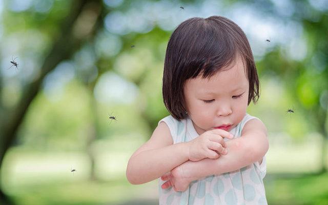 ребенка укусила оса